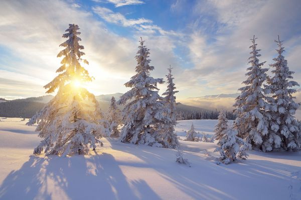 Foto: Winter-Landschaft